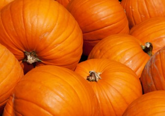 How Pumpkins Help Your Hormones