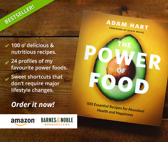 power-of-food-book-promo-square