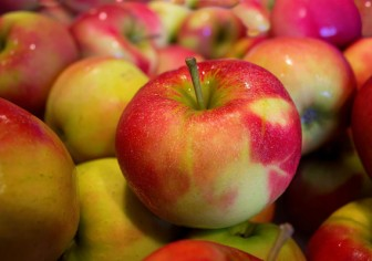 3 Things I Did To Beat My Allergy to Apples